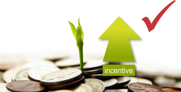 Nelson Mandela Bay Municipality Business incentive